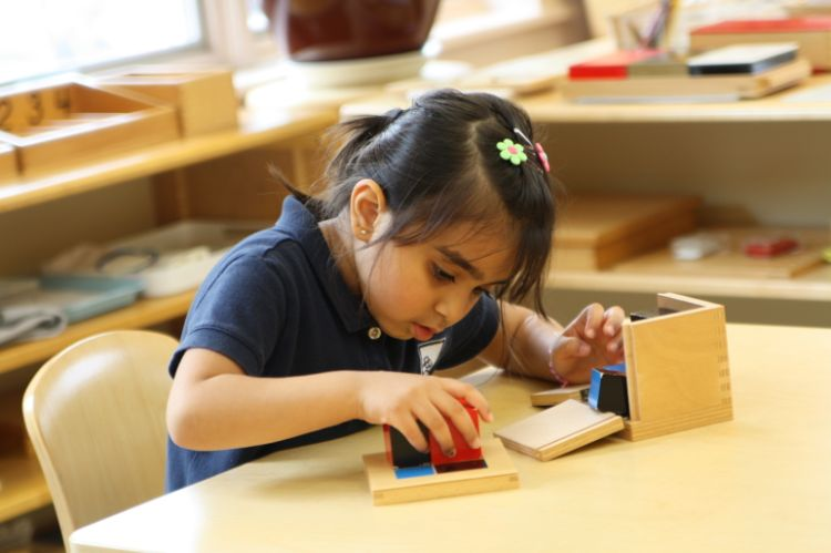 Authentic Montessori Education for Rockville MD Families