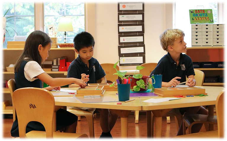 Harvard Champions How Montessori Builds Innovators