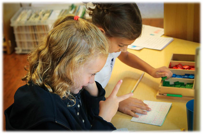 How Montessori Techniques Help Young Students in Rockville Transition in the Classroom