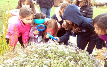 Primary-Montessori-Enrichment-Programs-01