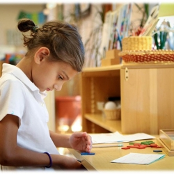 differences-between-montessori-and-public-